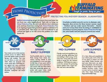 Buffalo Exterminating brochure