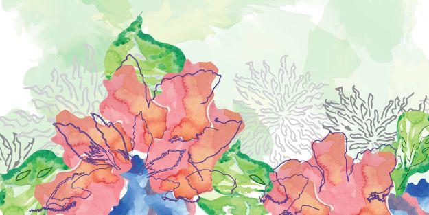 Ellen Morse floral and surface pattern design
